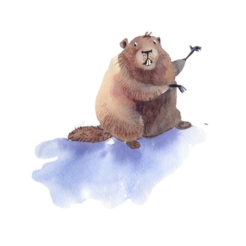 que fer el dia de la marmota
